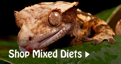 Mixed Diets